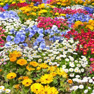 Flower Mats