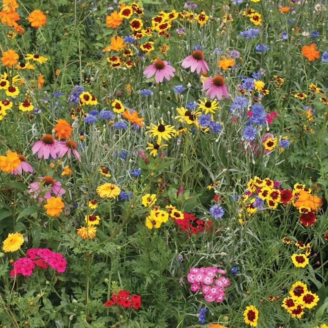 Bird Lovers Flower Garden Mat