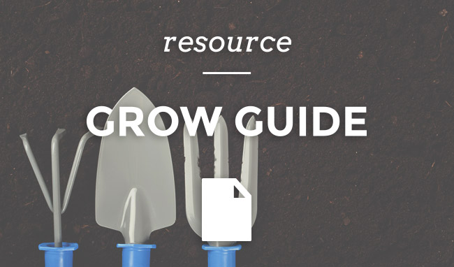 grow-guide-link
