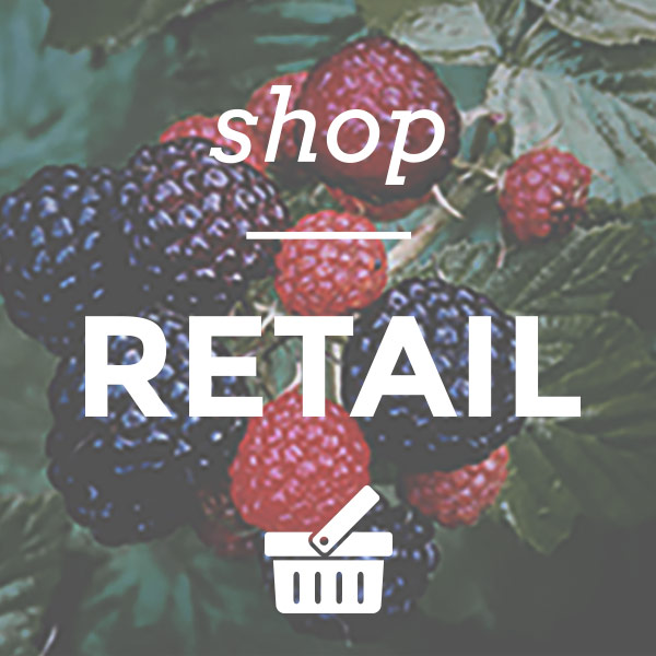 shop-retail-home