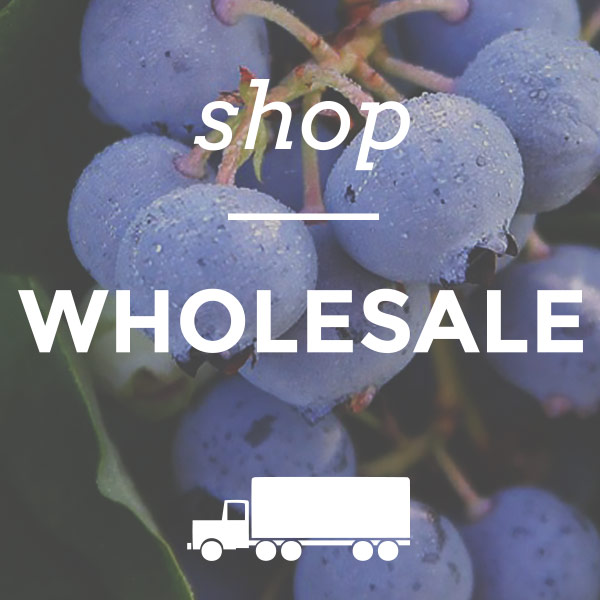 shop-wholesale-home