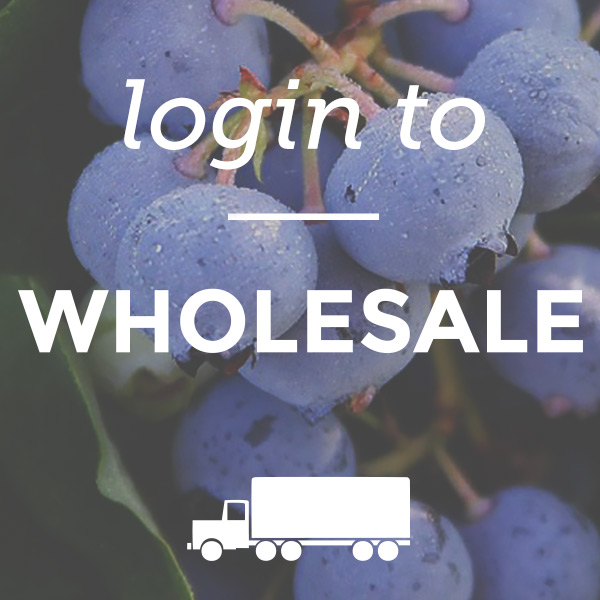 wholesale-login